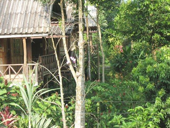 Sengdao Guesthouse