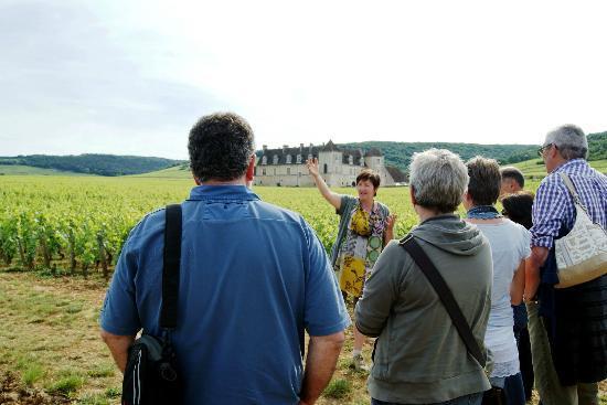 Gevrey-Chambertin, Francja: balade dans les vignes et dégustation / wine class in the vineyard