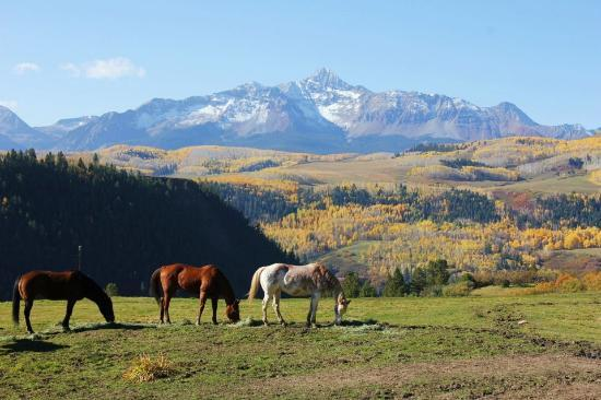 Last Dollar Road : A gorgeous ranch on the Telluride end