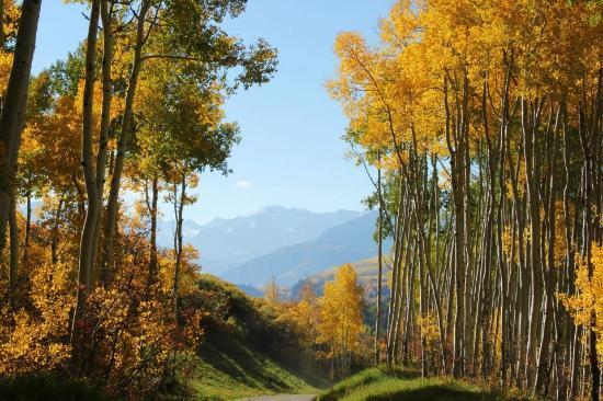 Last Dollar Road : Beautiful views around every turn!