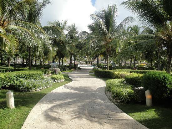 Melia Cayo Santa Maria: gardens