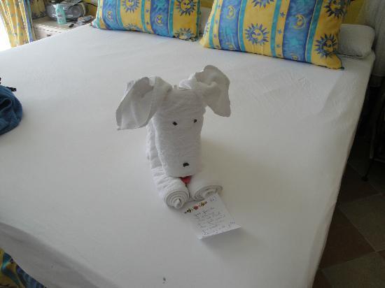 Melia Cayo Santa Maria: towels 