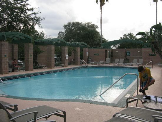 Embassy Suites by Hilton Tampa-USF/Near Busch Gardens: The outdoor pool at the Embassy Suites