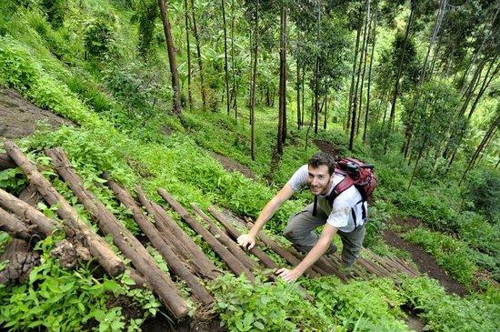 Mbale, Uganda: Trekking delle 3 Cascate
