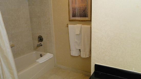 Monte Carlo Resort & Casino: Banheiro com iluminação fraca