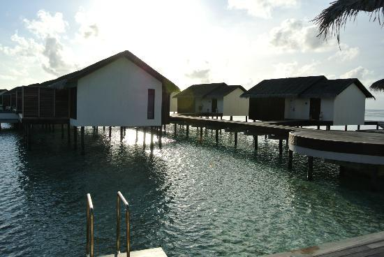 The Residence Maldives: water pool villa