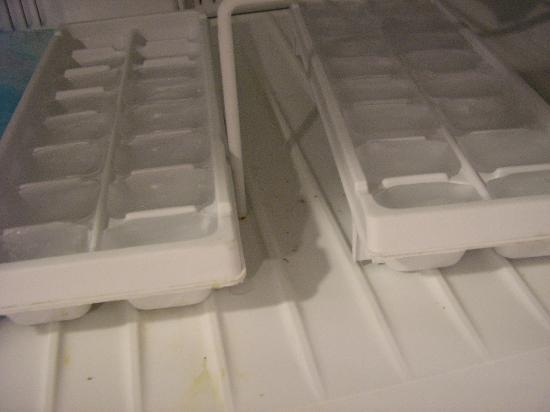 Cardozo Guest House: another view of freezer,could not put food in here