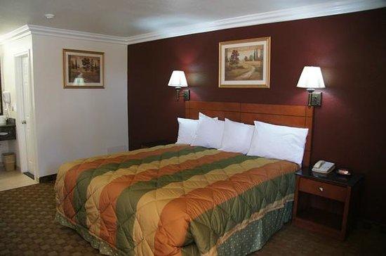Americas Best Value Inn - Adelanto/Victorville: 1 Kind Bed