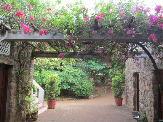 Lakeside Guest House: A lovely pergola at the entrance