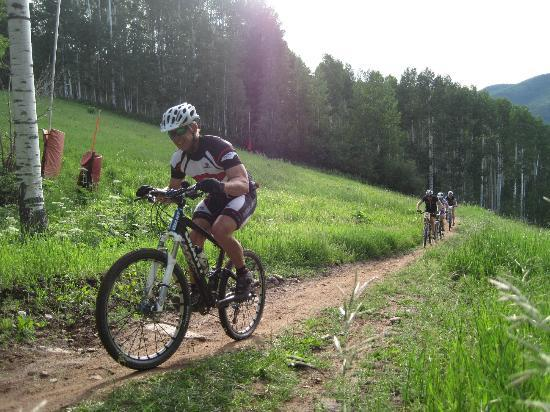Venture Sports Private Day Tours: Bike Rentals