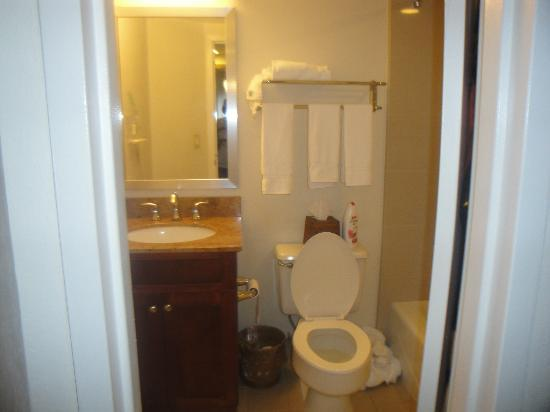 Holiday Inn Port St. Lucie: Tiny bathroom.
