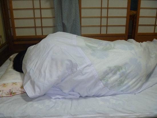 Ryokan Kyoraku: normally you pay less to sleep in one of these