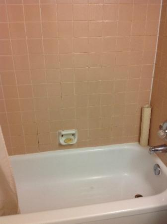 Canadas Best Value Inn : mold in grout