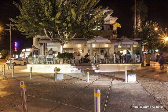 Pingouino Cafe : Pingouino  by Night