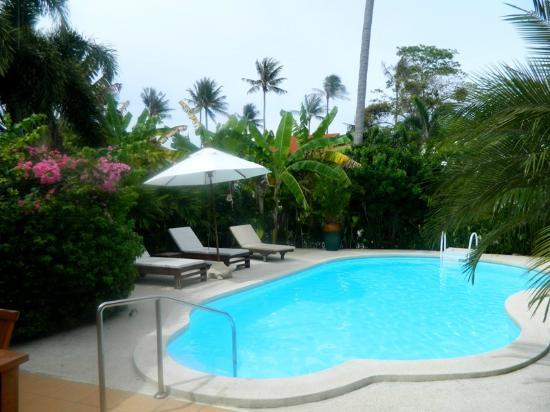 Shiva Samui: Baan orchid private pool