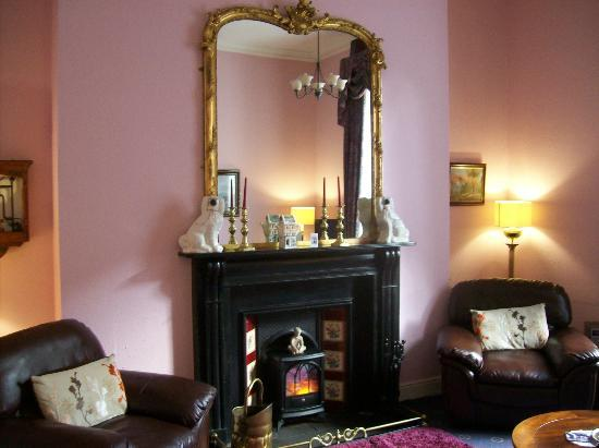 Anchor House Dublin: Parlor room, very nice