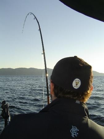 D and D Fishing Charters: trawling