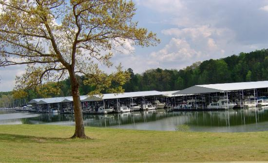 pickwick dam Pickwick landing park road | po box 15 pickwick dam , tn 38365-0015 731-689-3149 online tee time reservations the pickwick landing state park golf course is located close to the border of mississippi and alabama within the proximity of pickwick dam.
