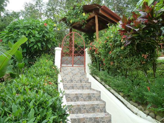 Villa Kristina Apartments: Garten