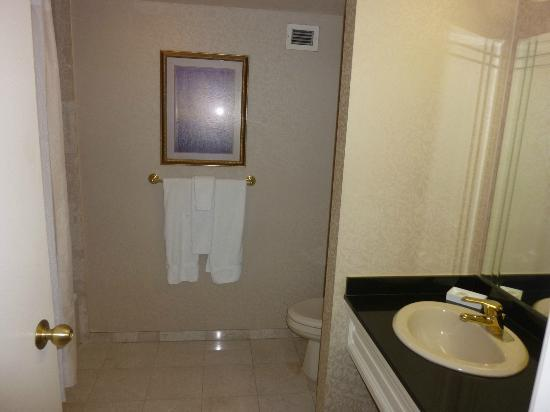 Monte Carlo Resort & Casino: The bathroom