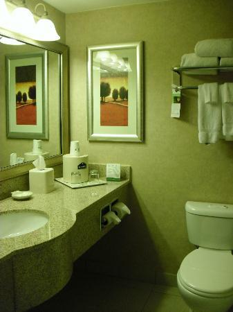 Wingate by Wyndham Tampa/At USF: Bathroom