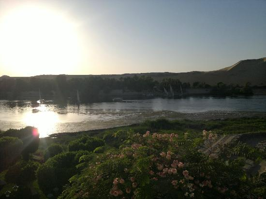 Movenpick Resort Aswan: The botanical island at dawn
