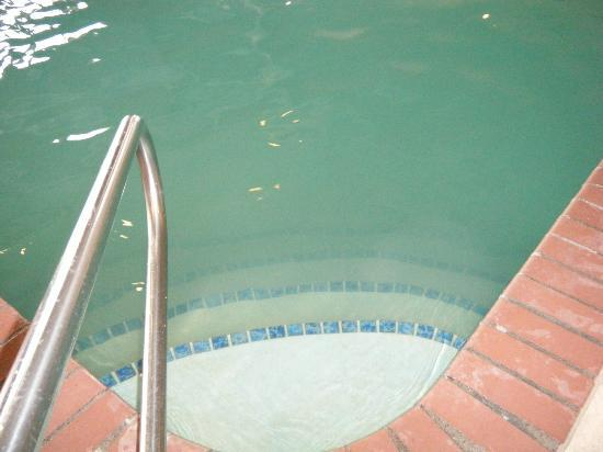 Hampton Inn Great Falls: Nasty smelly pool ... could not even see the last steps for floor