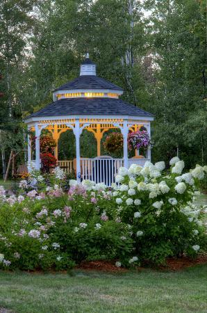 A G Thomson House Bed and Breakfast : Gardens, gardens, gardens!