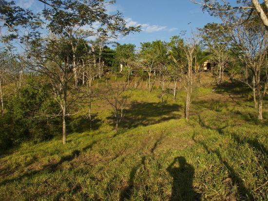 Fidelito Ranch & Lodge: Die Ranch liegt versteckt auf einem kleinen Hügel.