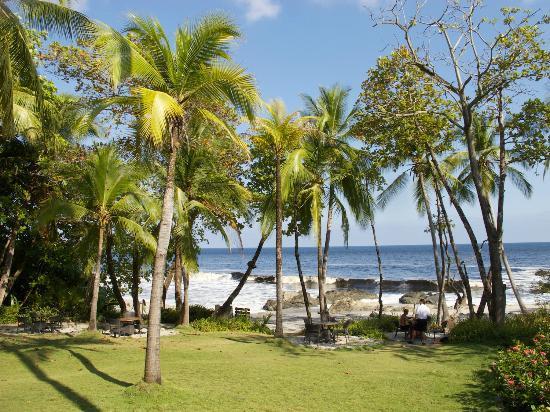 Fidelito Ranch & Lodge: Ideal für einen kleinen Ausflug: Strand in Montezuma