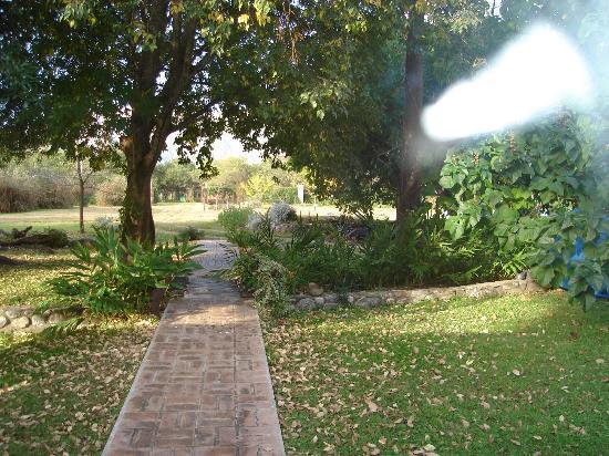 Casa Alfaro B&B: parque