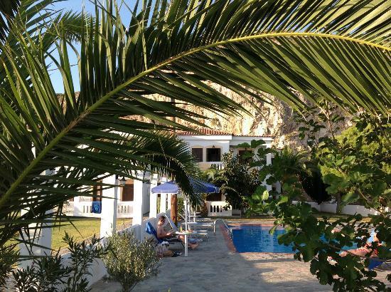 Princess Tia Hotel: Apartments thro' palms near bar