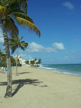 Coqui del Mar Guest House: Short walk to Ocean Park beach