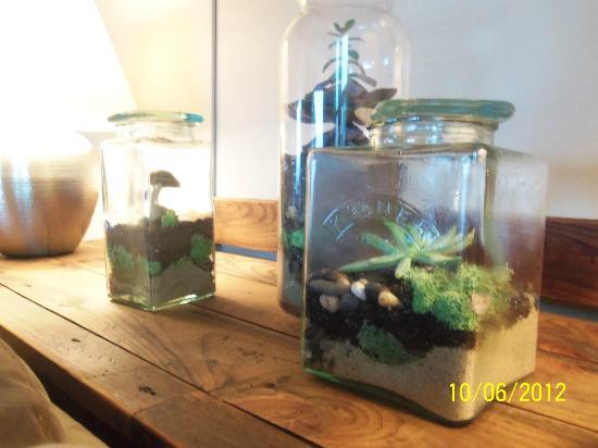 Halladay's Harvest Barn Inn: terrariums in the living room