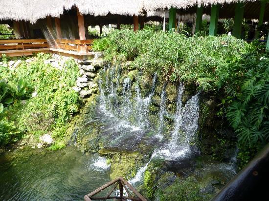 Iberostar Tucan Hotel: Zona del buffet