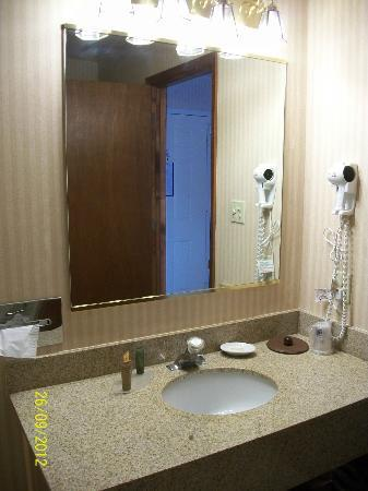 Best Western Pocatello Inn: Bathroom vanity