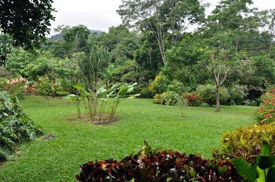 The Lodge and Spa at Pico Bonito: Garden View