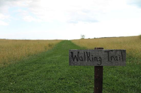 Goodstone Inn & Restaurant : walking trail = beware cows!