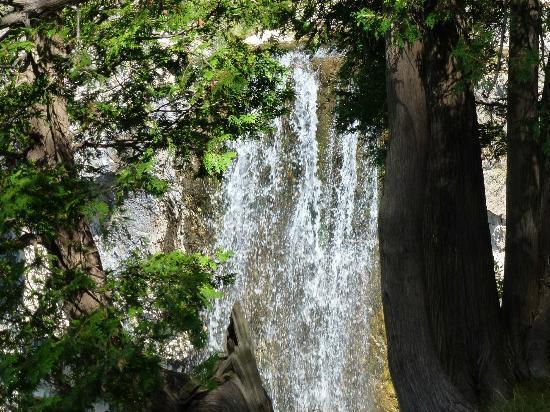 Eugenia Falls Conservation Area: easy access pretty little falls