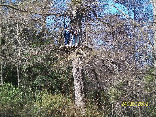 Canopy San Martin de los Andes: Facu volando entre el bosque
