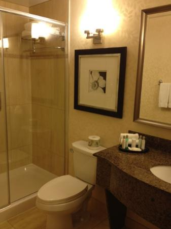 Hilton Garden Inn Montreal Centre-ville: decent bathroom. Would be great if there is a bathtub!