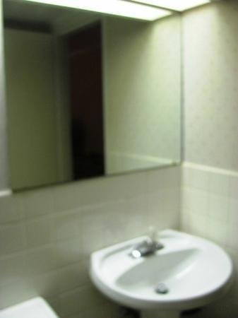 Econo Lodge By the Falls: Mirror in the washroom.