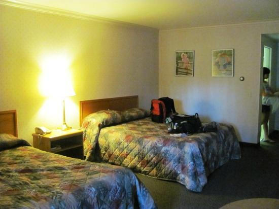 Econo Lodge By the Falls: The room.