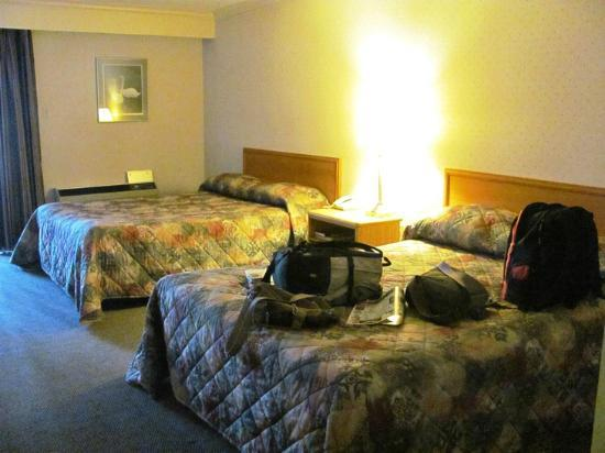 Econo Lodge By the Falls: 2 beds.