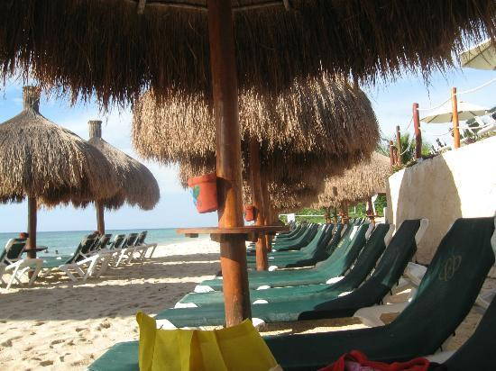 Occidental Cozumel: Beach and chairs.