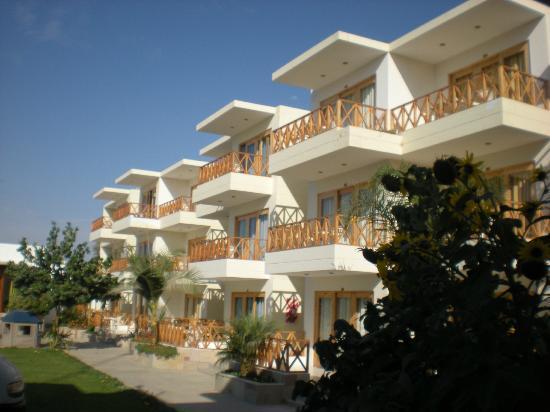 Pileta picture of hotel emancipador paracas tripadvisor for Hoteles en paracas