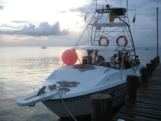 Occidental Grand Cozumel: Dive boat heading out ar sunset.