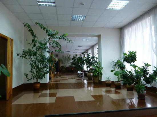 Tsentralnaya : Lobby area - view of check in area.
