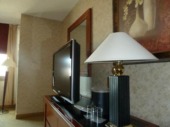 Hyatt Regency Rochester: LCD TV