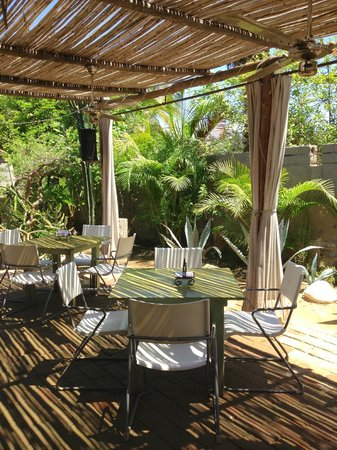 Desertu: Perfect lunch time dining in the shade of the lush courtyard
